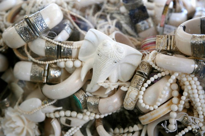 Confiscated ivory jewelry is displayed before the U.S. Fish and Wildlife Service crushed 6 tons of ivory, in Denver, Colorado